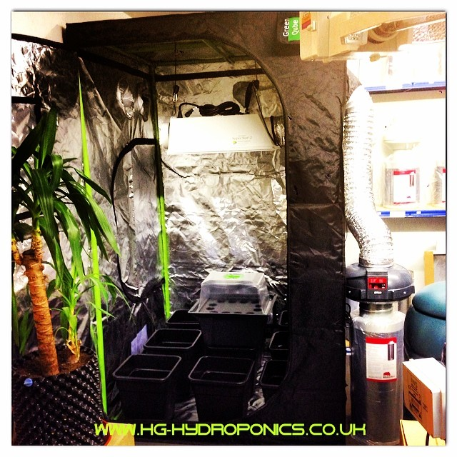Hg Hydroponics Blog Heat Problems In Your Grow Room Air