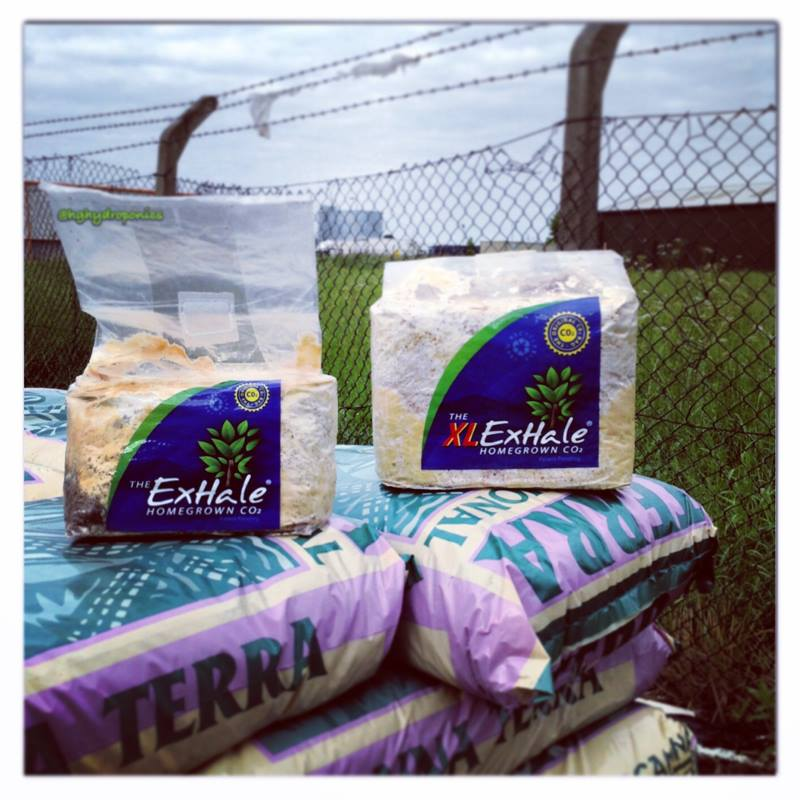 Hg Hydroponics Blog Exhale Co2 Bag Now Available In New