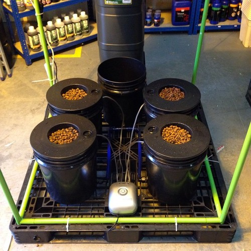 Hg Hydroponics Blog 4 Pot Dwc Kit From Only 163 99 95 Huge