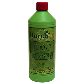 Dutch Pro Leaf Green