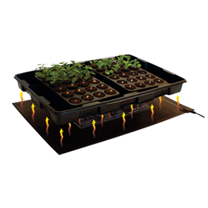 Rootit medium Propagator Heat Mat